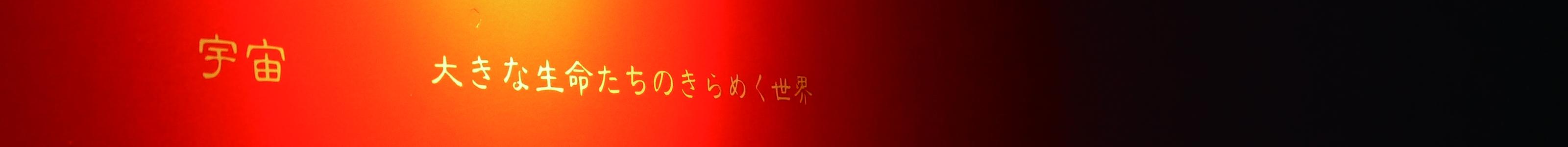 obatamariko.com